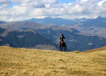 horse riding in georgia