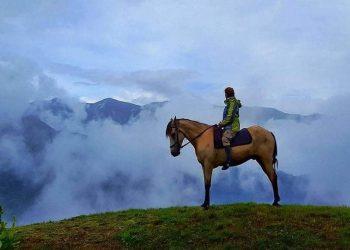 Horse Riding in Kazbegi